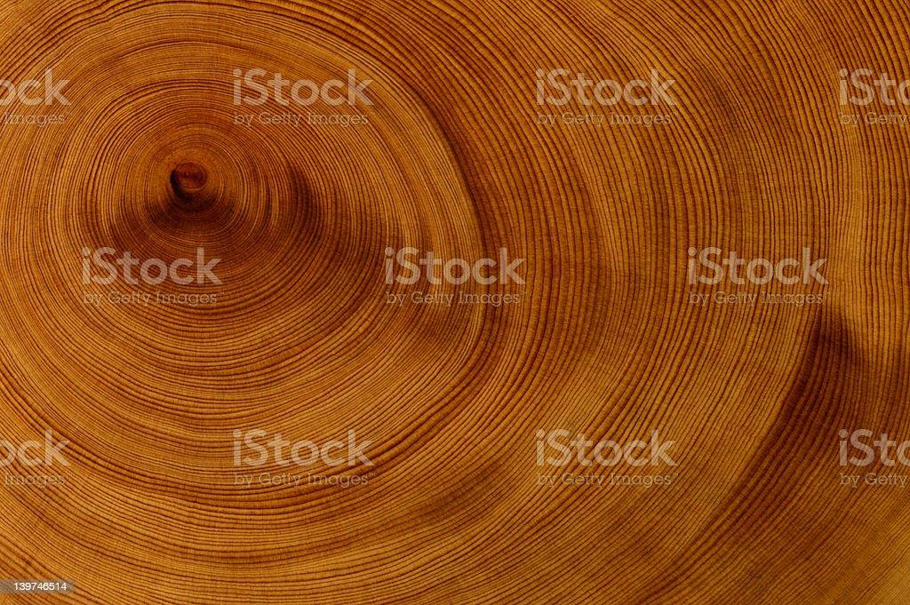 Background - Huon Pine stock photo