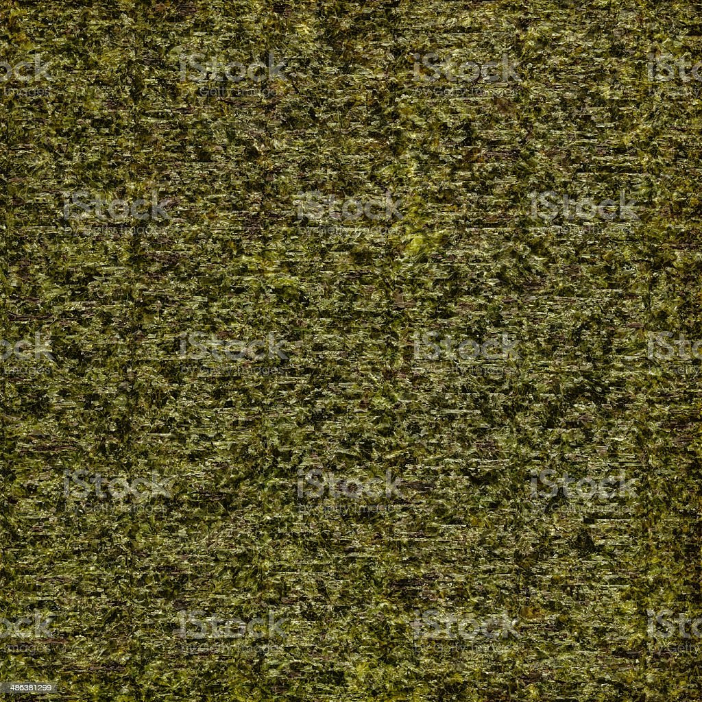 Background made ​​from dried algae stock photo
