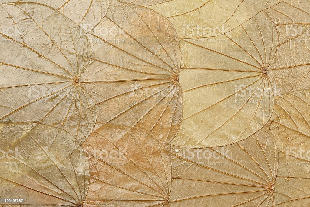 Background made of leaves royalty-free stock photo