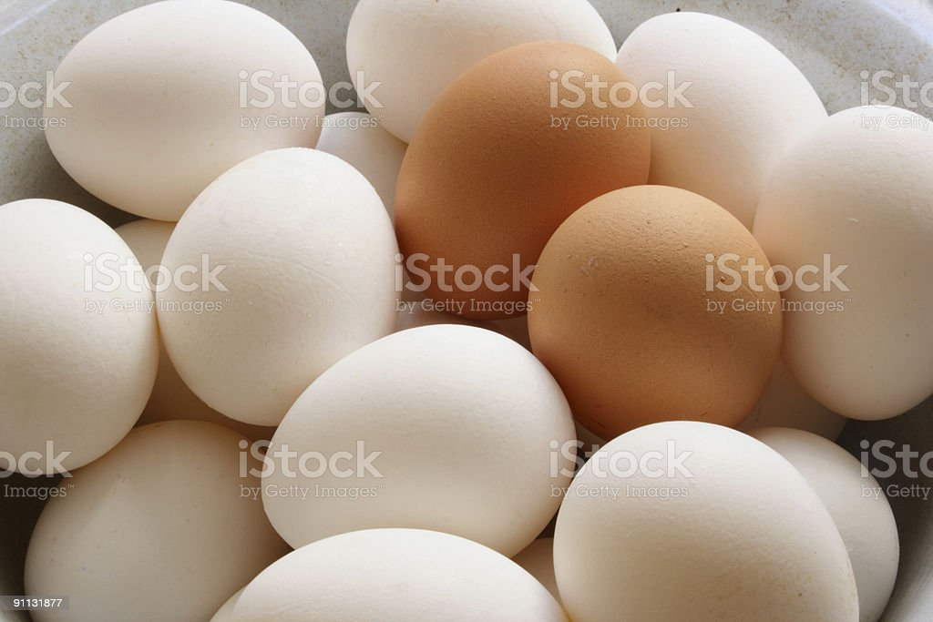Background made of white and brown eggs stock photo