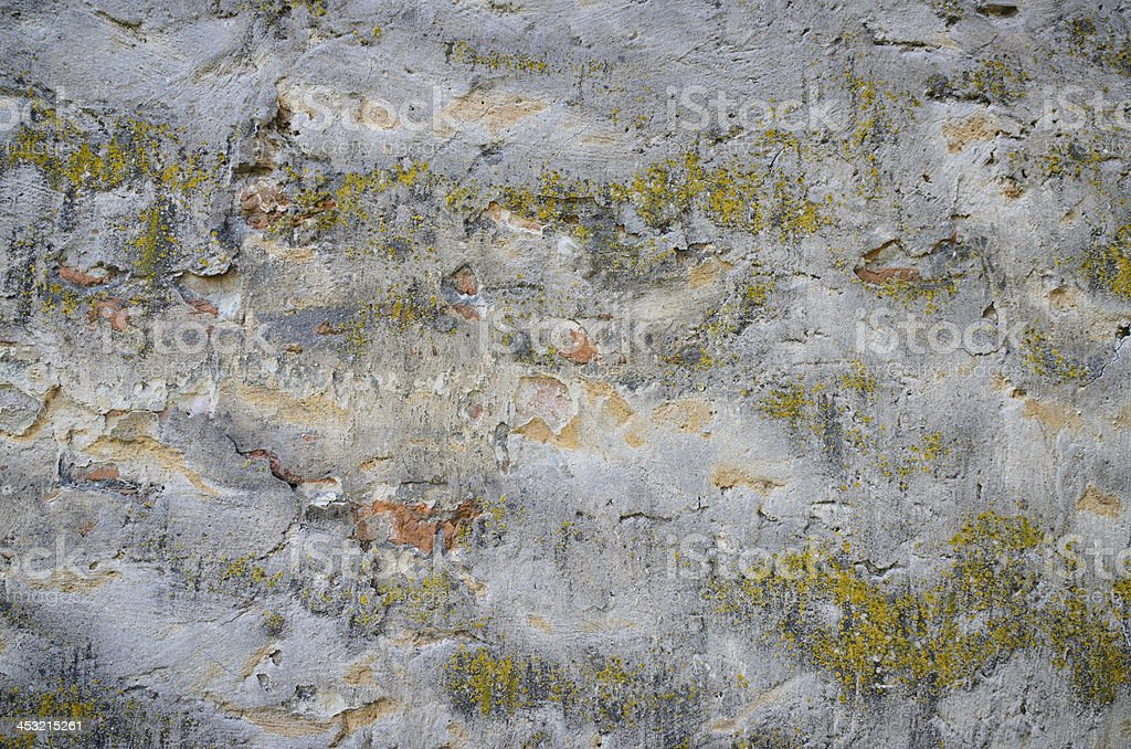 Background of a grungy gray cement wall with moss royalty-free stock photo