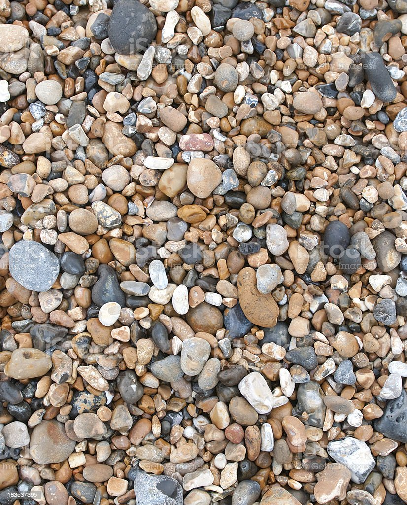 Background of beach rock and shells Brighton England stock photo