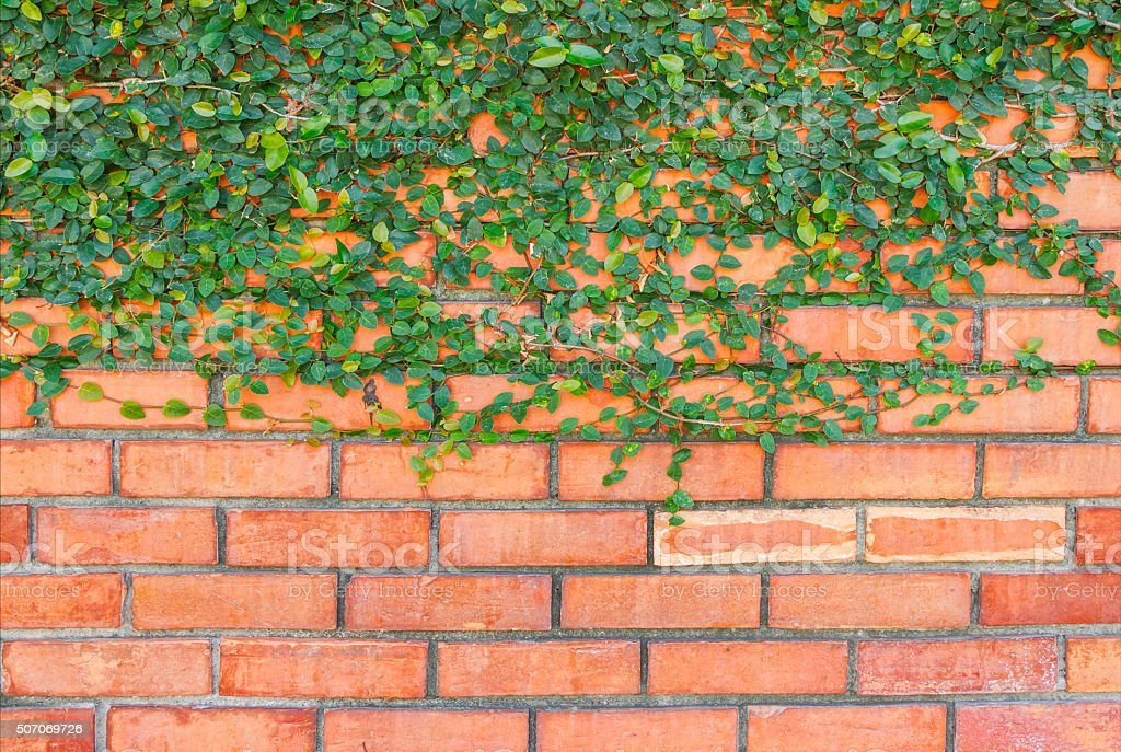 Background of brick wall texture of design. stock photo