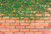 Background of brick wall texture of design.