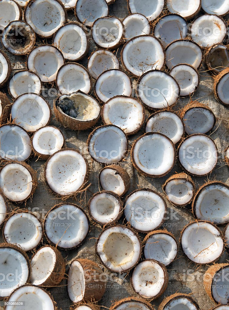 Background of coconut halves drying in the sun stock photo