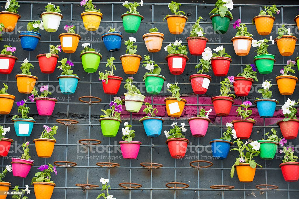 Background of Colorful flowers pots stock photo