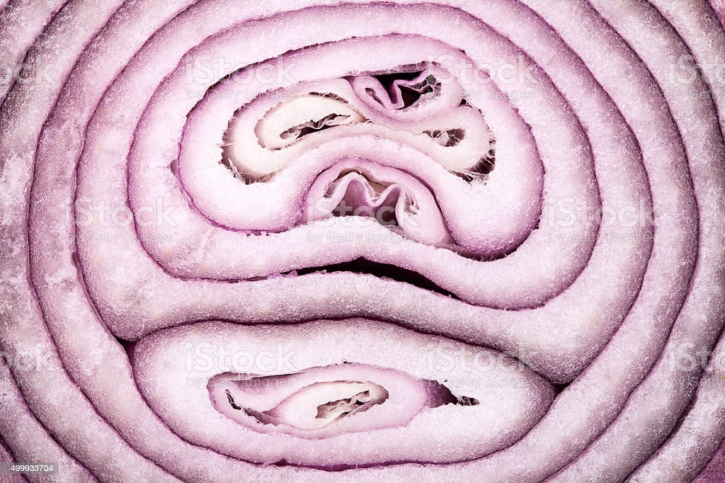 background of cut red onion, close up stock photo