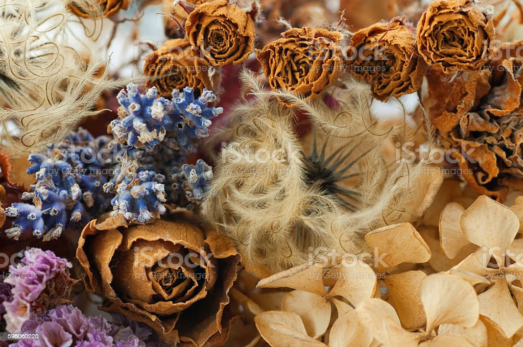 background of dry flowers stock photo