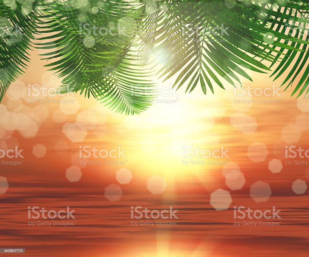 3D background of ferns on sunset ocean background stock photo