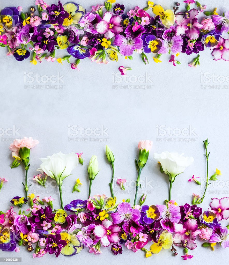 Background of  flowers stock photo