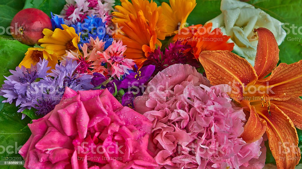 background of flowers royalty-free stock photo