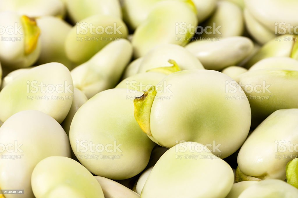 background of fresh green broad bean, close up stock photo