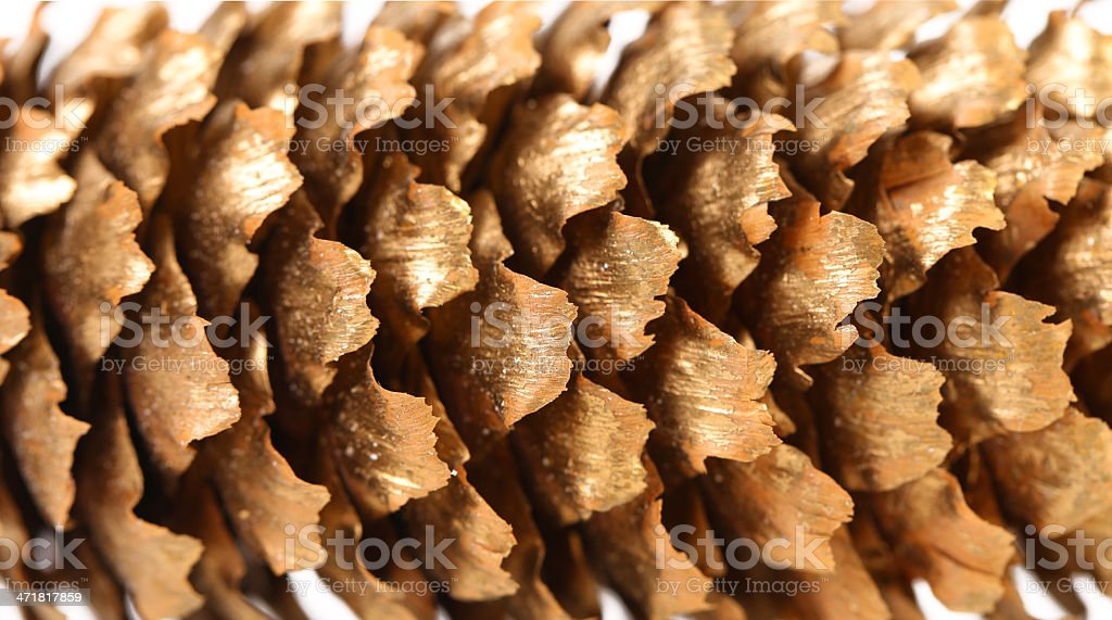 Background of golden large pine cone. royalty-free stock photo