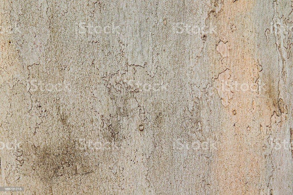 プレーンの木の木製の背景 ロイヤリティフリーストックフォト