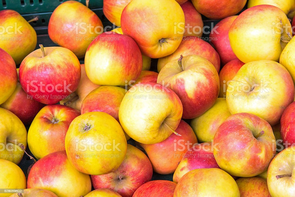 Background of red and yellow apples stock photo