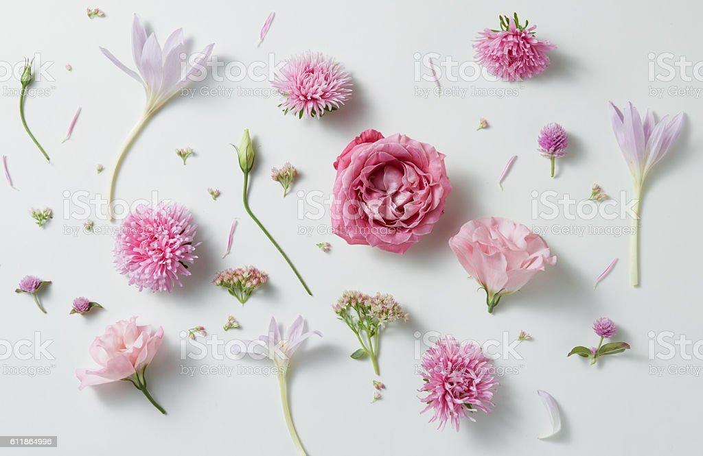 background of roses stock photo