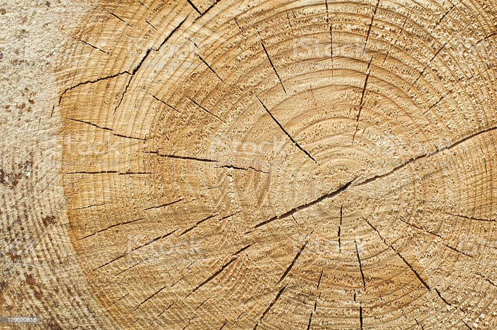 Background of split wood royalty-free stock photo