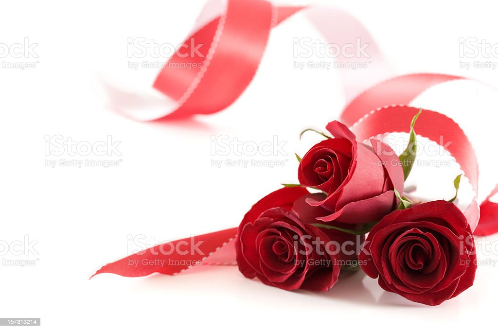 Background of White with Three Roses and Ribbon, Copy Space royalty-free stock photo