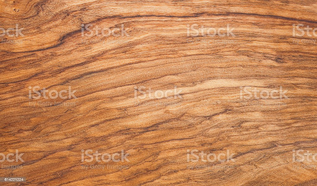 Background olive wooden tree stock photo