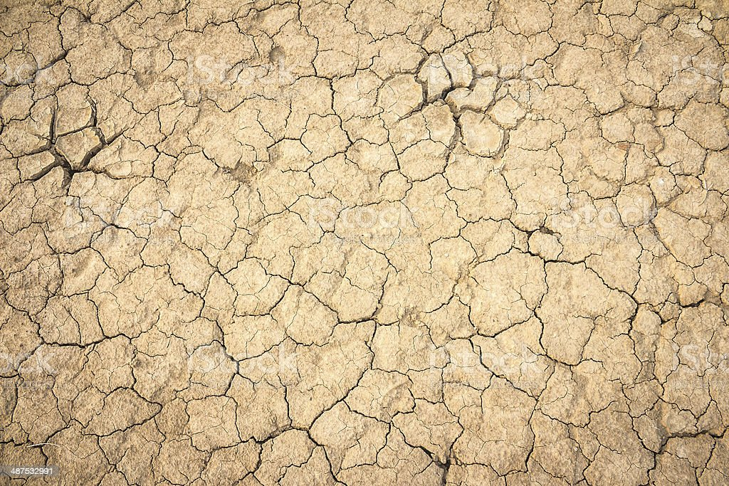 Background soil fissures stock photo