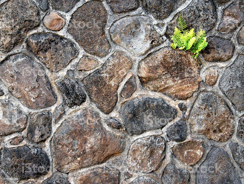 Background Stone Wall royalty-free stock photo