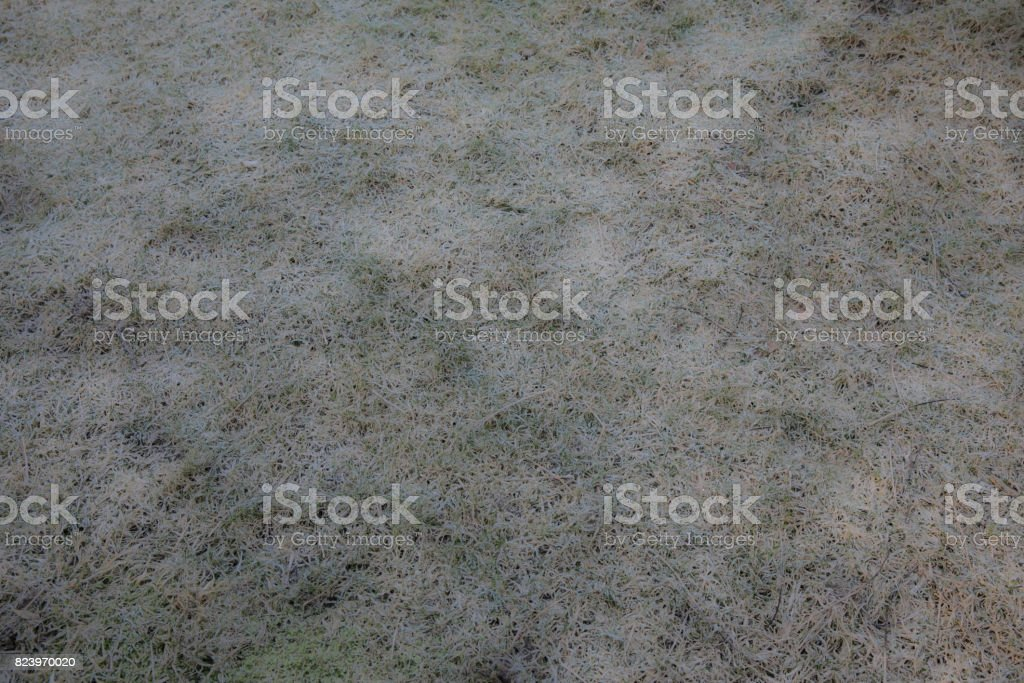 Background. Texture. stock photo