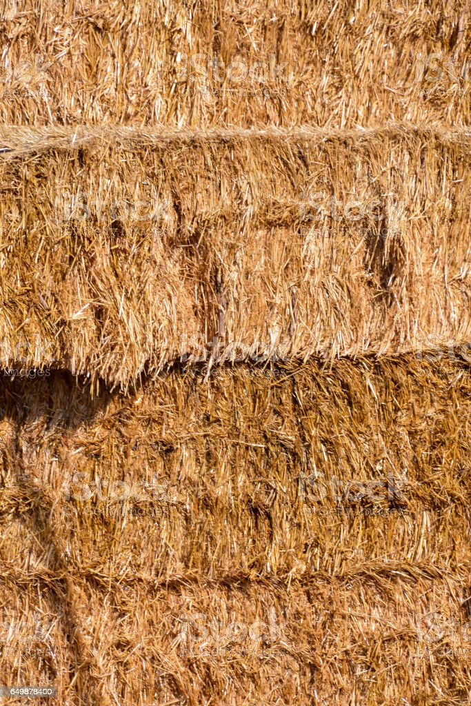 Background The natural texture of dry straw stock photo