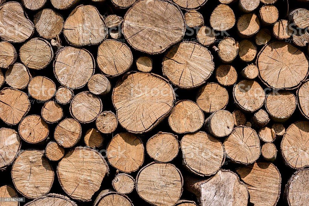 Background tree trunks stock photo