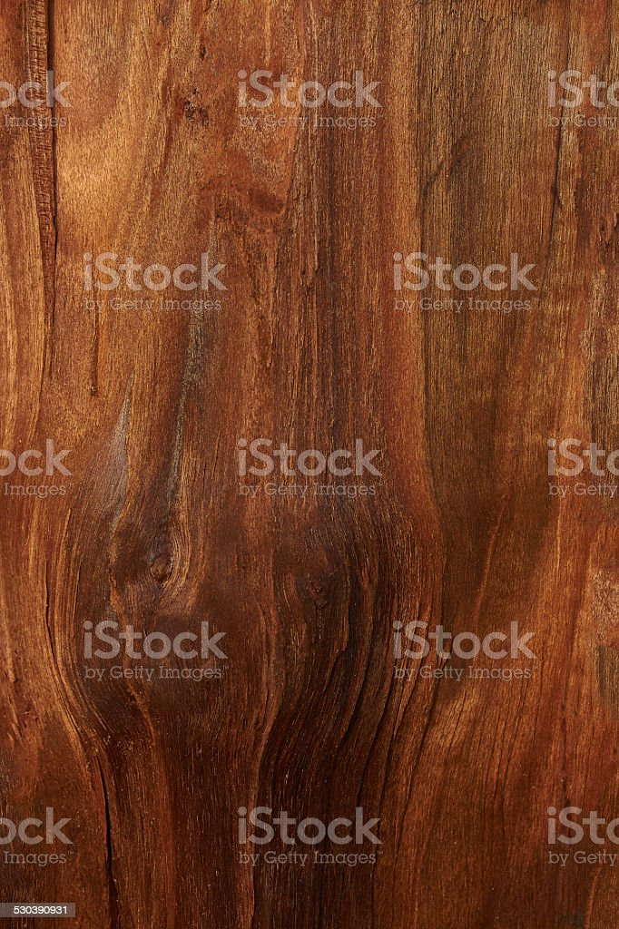 background walnut royalty-free stock photo