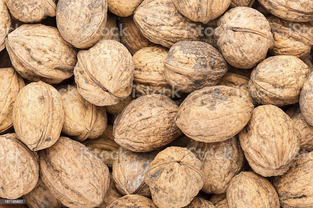 Background Walnut shell texture royalty-free stock photo