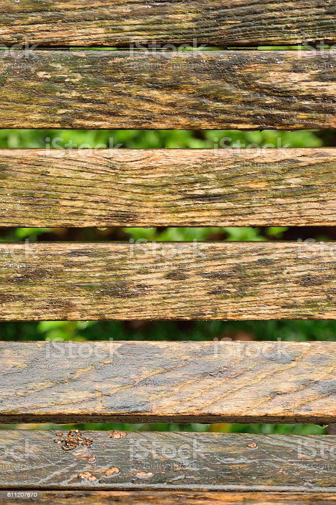 Background wet wooden park bench in vertical frame stock photo