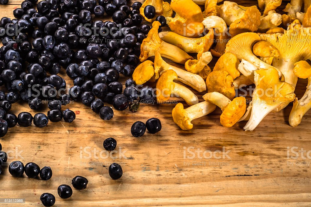 Background with black berries and chanterelles mushrooms. stock photo