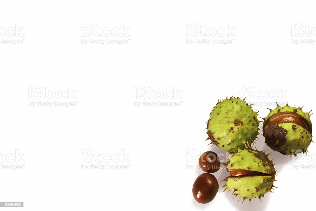 Background with chestnuts royalty-free stock photo