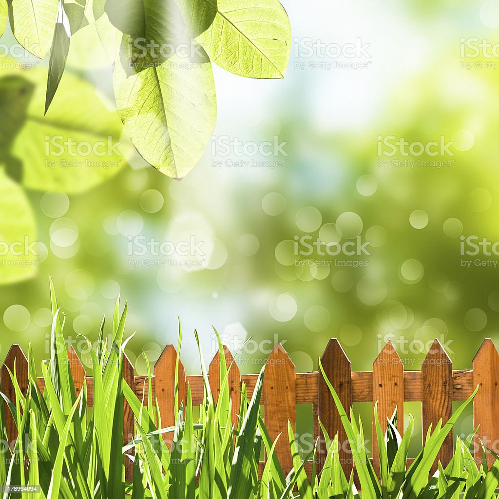 Background with fence and grass stock photo