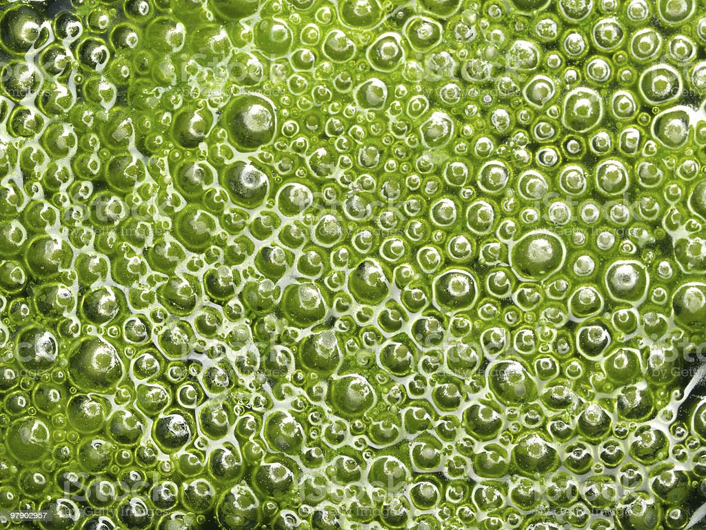 Background with green bubbles royalty-free stock photo