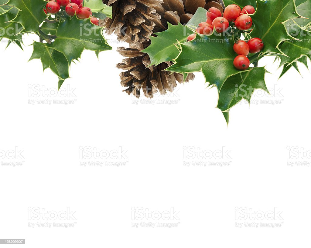 Background with holly and pine cones on top stock photo