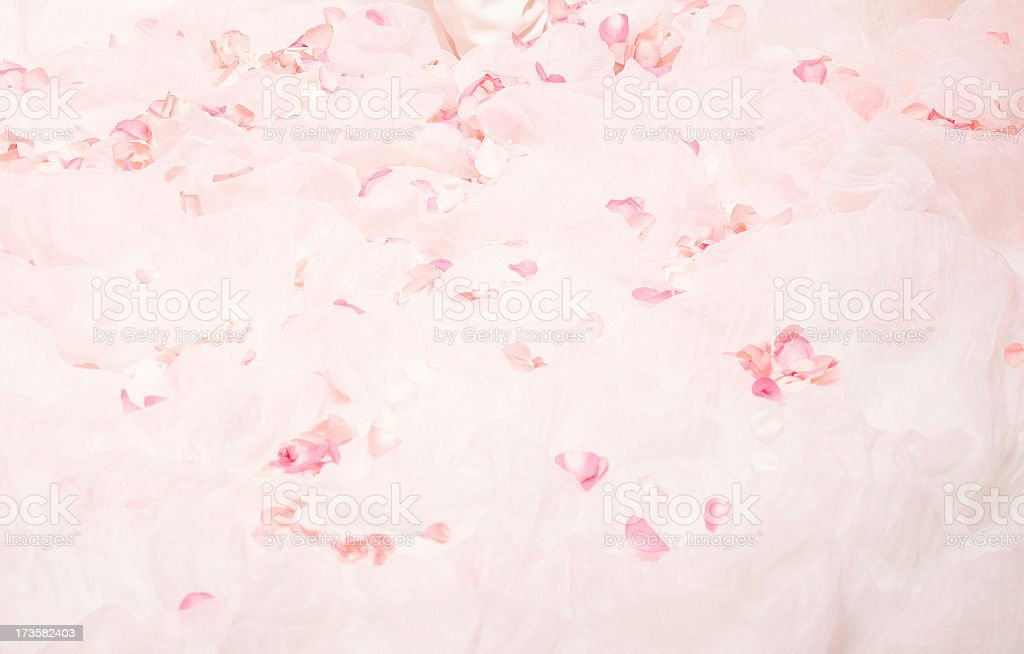 Background with Petal-Gauze royalty-free stock photo