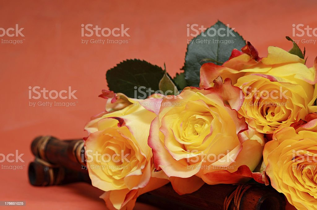 Background with roses royalty-free stock photo