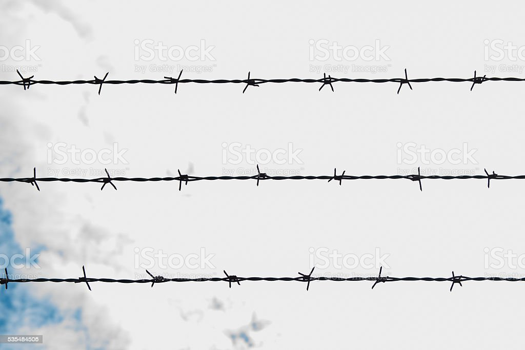 Backlit barbed wire. stock photo