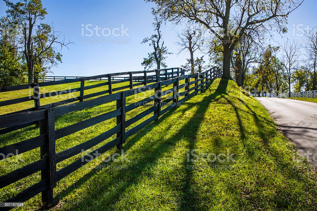 Backlit Fence Line and Lane stock photo