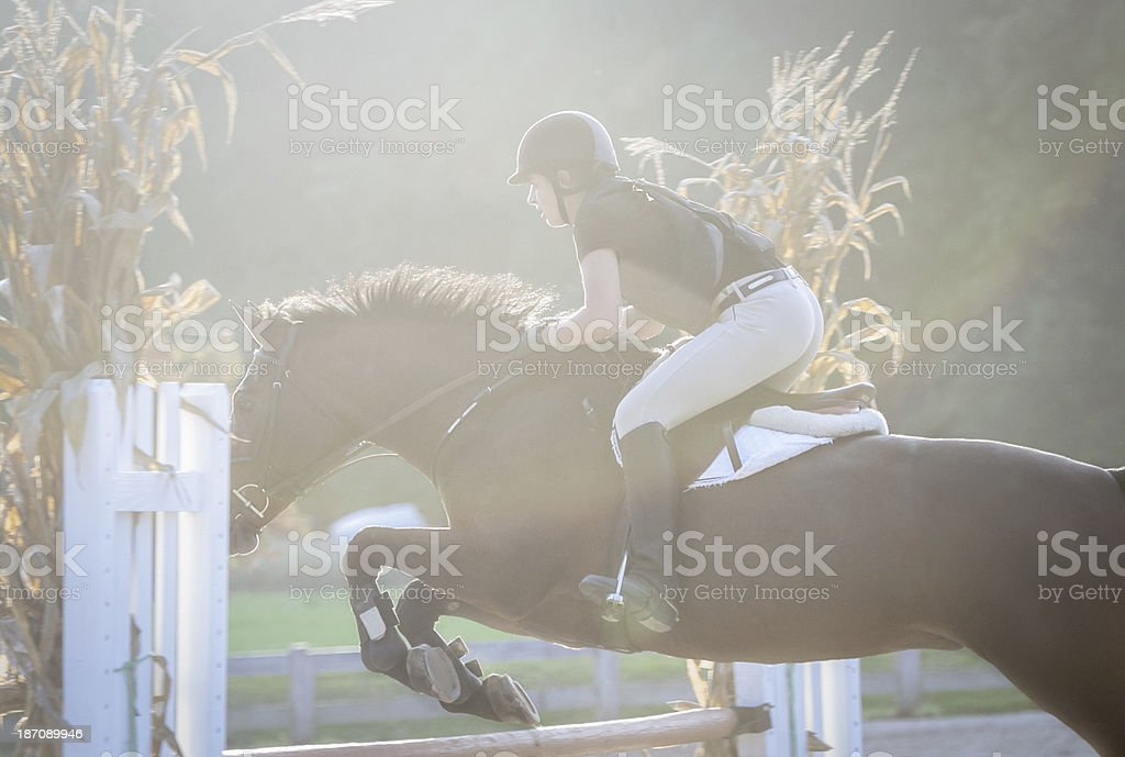 Back-lit horse and rider jumping a fence royalty-free stock photo