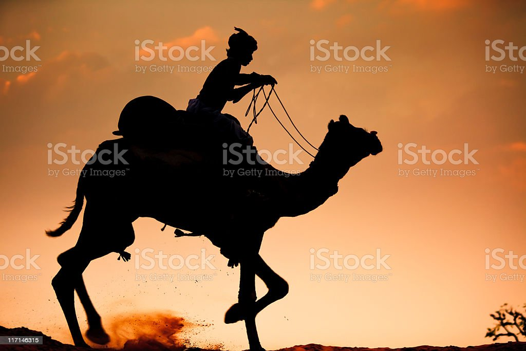 Backlit Silhouette Lonely Camel Rider Desert India royalty-free stock photo
