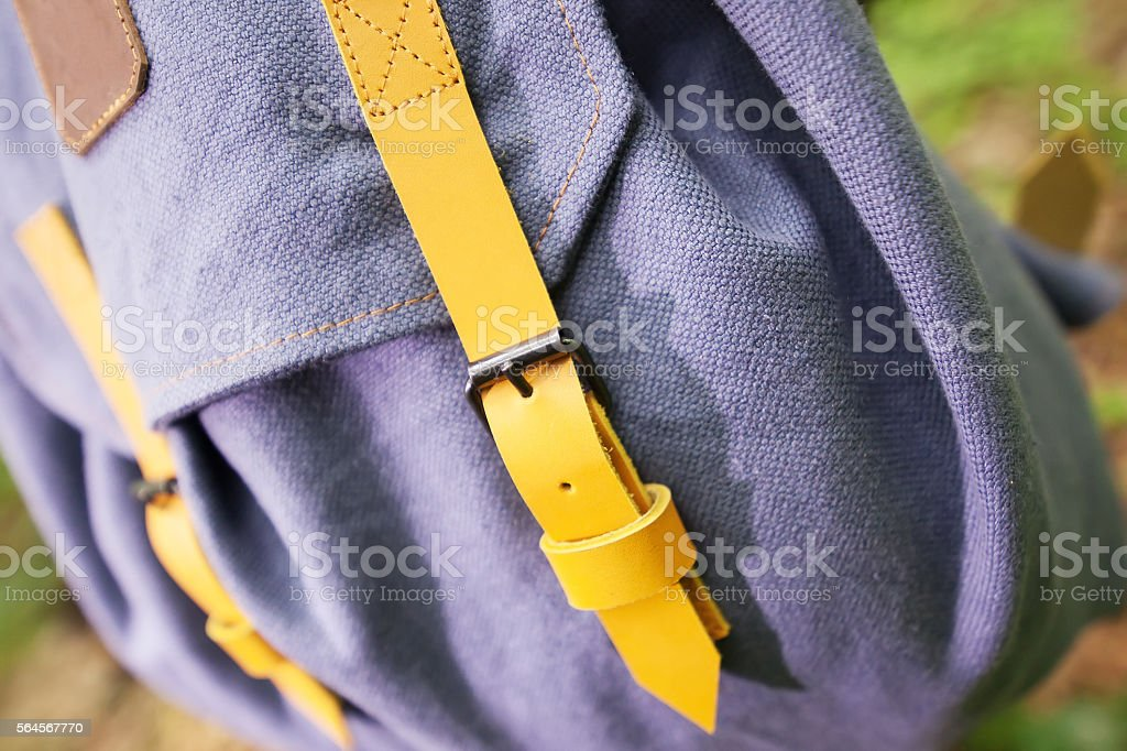 backpack on the tree stock photo