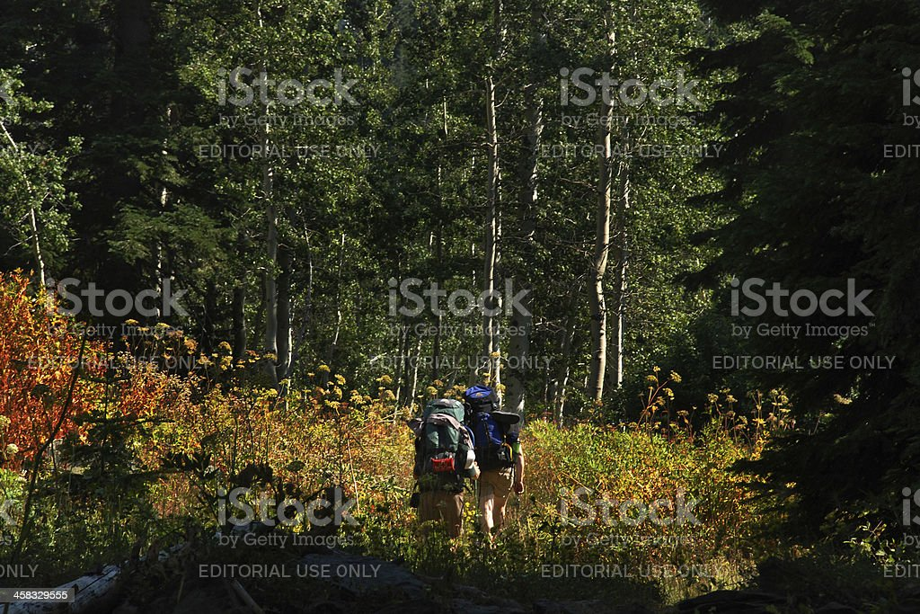 Backpackers in Marble Mountain Wilderness royalty-free stock photo