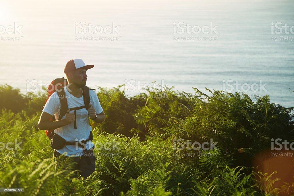 Backpaker hiking on hills near sea stock photo