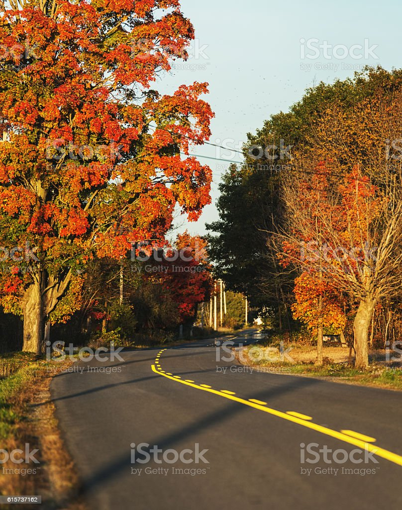 Backroad Colours stock photo