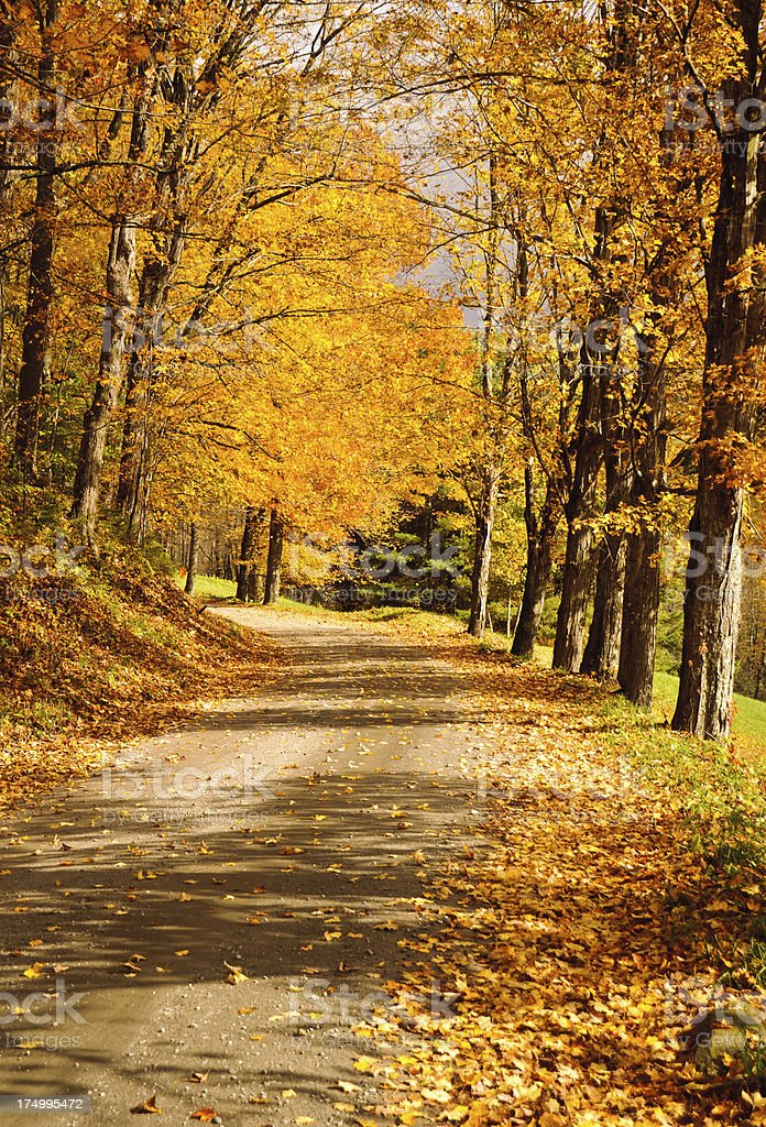 Backroad Vermont stock photo
