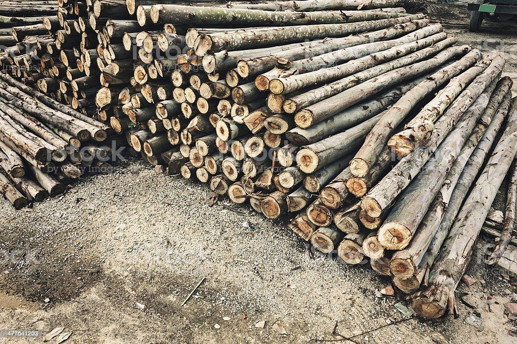backround of piled tree trunks royalty-free stock photo