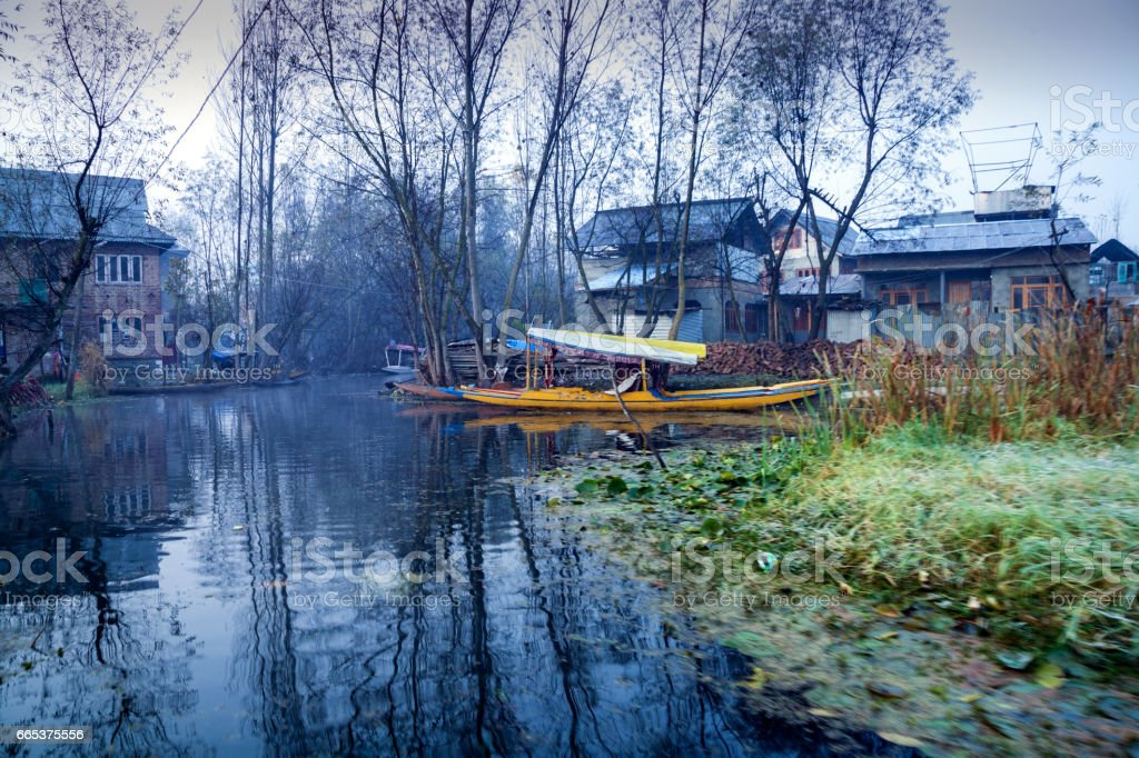 A backwater canal from Dal Lake stock photo