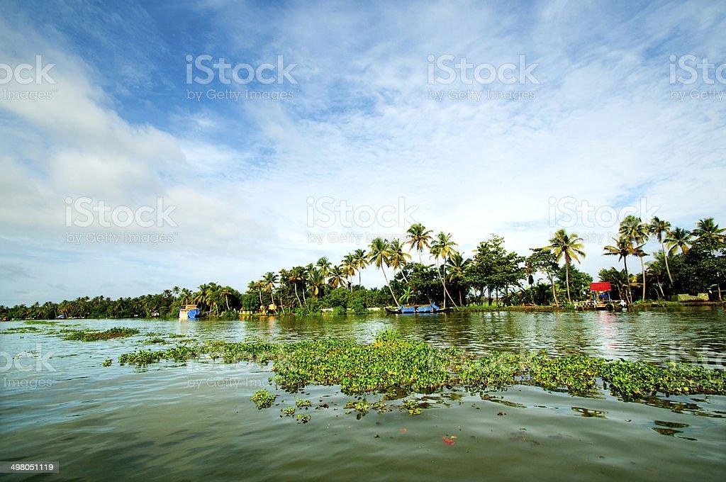 Backwaters,Kerala stock photo
